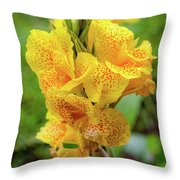 Colombian Flower Throw Pillow