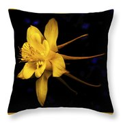 Colombine 1 Throw Pillow