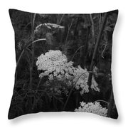 Colonial Garden At Twilight Throw Pillow