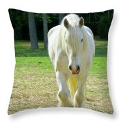 Colonial Horse In Williamsburg Throw Pillow