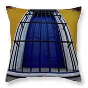 Colonial Window Throw Pillow