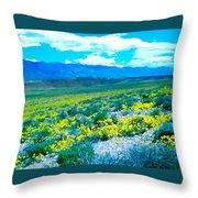 Color 57 Throw Pillow
