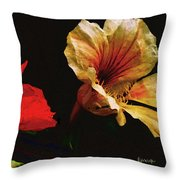 Color And Light Suspended Throw Pillow