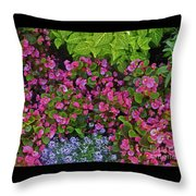 Color Combination Flowers Cc73 Throw Pillow