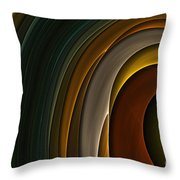 Color Curves Throw Pillow