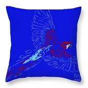Color In Flight Throw Pillow