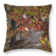 Color In The Dunes Throw Pillow