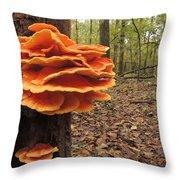 Color In The Woods Throw Pillow