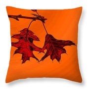 Color Me Autumn 2 Throw Pillow
