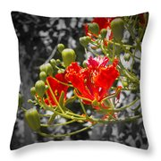 Color Me Red Throw Pillow