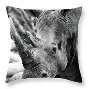 Color Me Rhino Throw Pillow