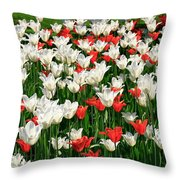 Color Mixing Throw Pillow