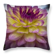 Color Starburst Throw Pillow