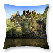Color Surround Throw Pillow