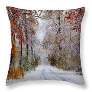 Color Tunnel In The Sourlands Throw Pillow
