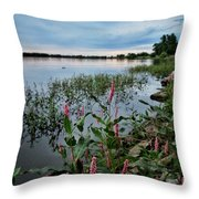 Color Wakes Up Throw Pillow