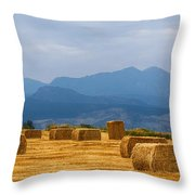 Colorado Agriculture Farming Panorama View Pt 2 Throw Pillow