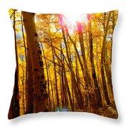 Colorado Aspen Gold 3 Throw Pillow