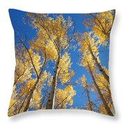 Colorado Aspen Throw Pillow