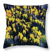 Colorado Autumn #5 Throw Pillow