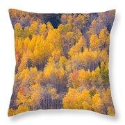 Colorado Autumn Trees Throw Pillow