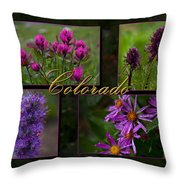 Colorado Beauty Throw Pillow