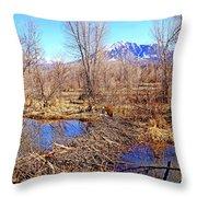Colorado Beaver Ecosystem Throw Pillow