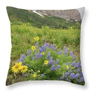 Colorado Color #4 Throw Pillow