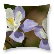 Colorado Columbine #1 Throw Pillow