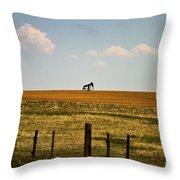 Colorado Crude Throw Pillow