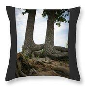 Colorado Entanglement Throw Pillow