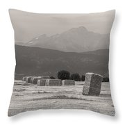 Colorado Farming Panorama View In Black And White Pt 1 Throw Pillow