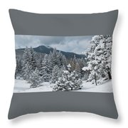 Colorado Foothills Winter Panorama Throw Pillow