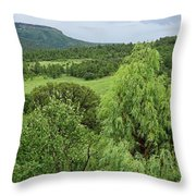 Colorado Green Throw Pillow