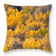 Colorado High Country Autumn Colors Throw Pillow