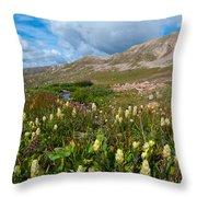 Colorado Late Summer Splendor Throw Pillow