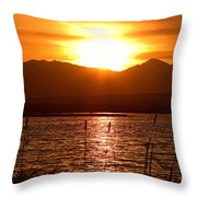 Colorado Marsh At Sunset Throw Pillow