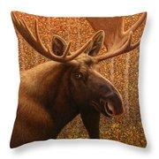 Colorado Moose Throw Pillow by James W Johnson