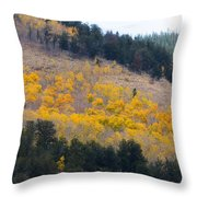 Colorado Mountain Aspen Autumn View Throw Pillow