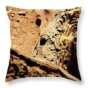 Colorado National Mounument Throw Pillow