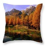 Colorado Nature Throw Pillow