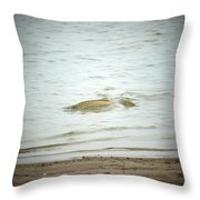 Colorado Net Fishing Throw Pillow