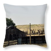 Colorado Past And Present Throw Pillow