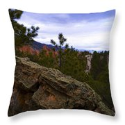 Colorado Red Rocks Throw Pillow by Barbara Schultheis
