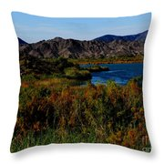 Colorado River Throw Pillow