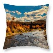Colorado River In Autumn Throw Pillow