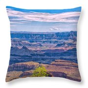 Colorado River In The Grand Canyon Throw Pillow