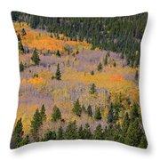Colorado Rocky Mountains Autumn Colors Throw Pillow
