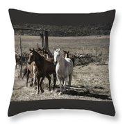 Colorado Run Throw Pillow