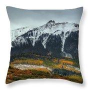Colorado Seasons Throw Pillow